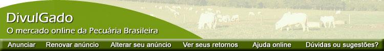 DivulGado: o mercado online da Pecuária Brasileira!